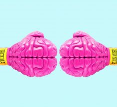 How to Train Your Brain and Improve Memory